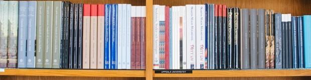 Publikation zum Verstehen beim Dolmetschen und Übersetzen